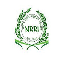NRRI Cuttack Recruitment